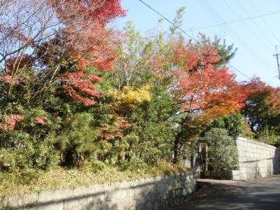 春日大社裏の邸宅の紅葉