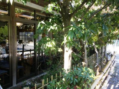 そば処吟松店前の庭