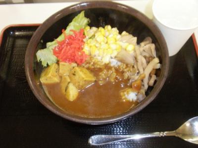 豆腐茶屋がんこ豆腐ハンバーグカレー大330円