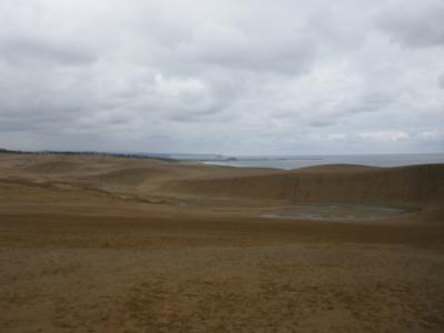 雨の鳥取砂丘
