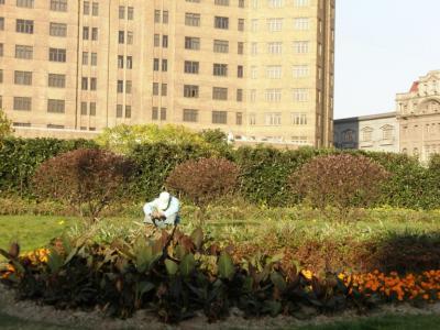 黄浦公園の清掃員爆睡