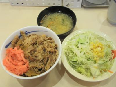 松屋20110208牛めし(並)250円サラダ100円