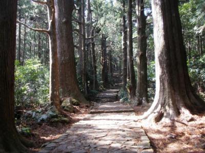 熊野古道20110221