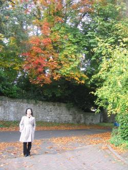Autumn+colours_convert_20091009050555.jpg