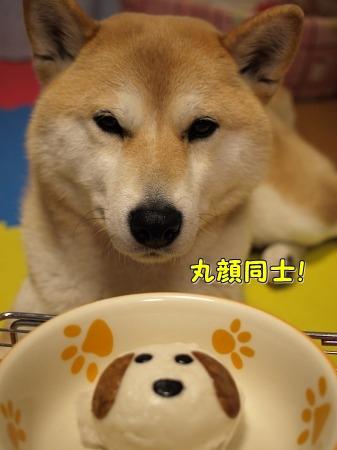 がん見!!
