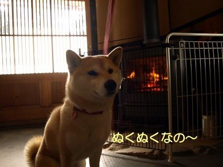 暖炉ぬくぬく~