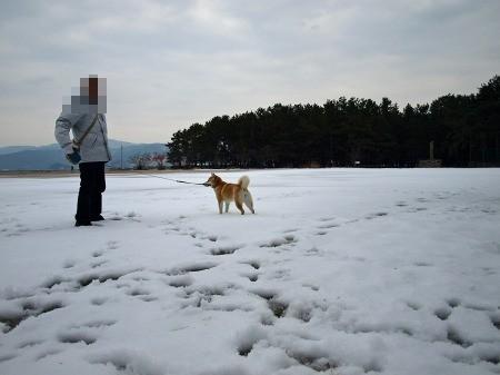 おっとうと雪の中~