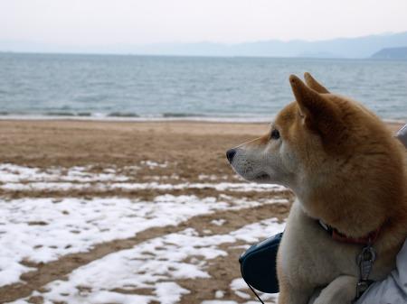 海を見る!