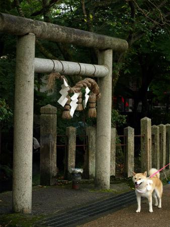 加茂神社前にて