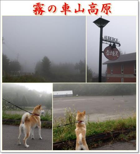 霧の車山高原