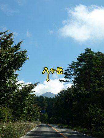 八ヶ岳を目指して~