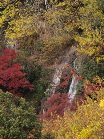 ちょっぴり紅葉の箕面の滝