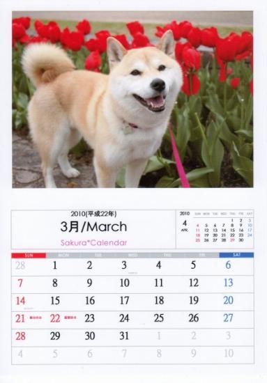 3月カレンダーA
