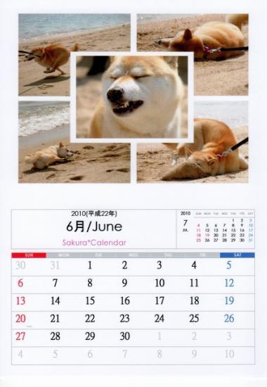 6月カレンダーA