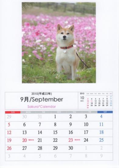 9月カレンダーA