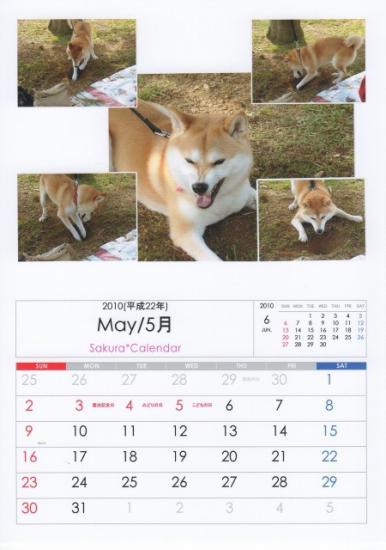 5月カレンダーB