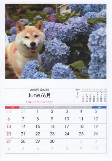 6月カレンダーB