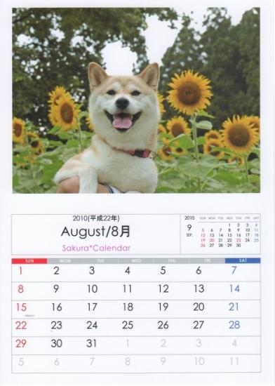 8月カレンダーB