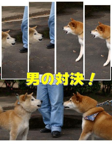 男の対決!!