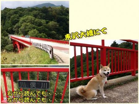 東沢大橋にて!