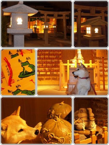 夜の加恵瑠神社