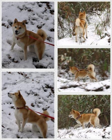 雪でハッスル~
