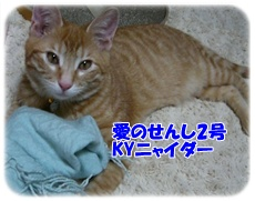 200909252.jpg