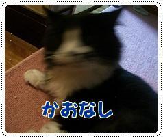 200910082.jpg