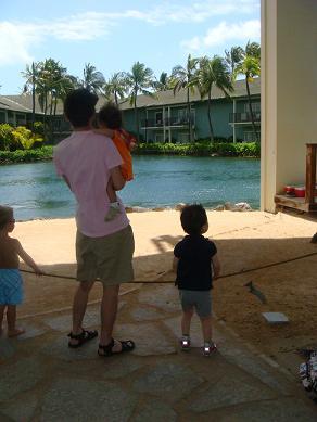 hawaii2010-8.jpg