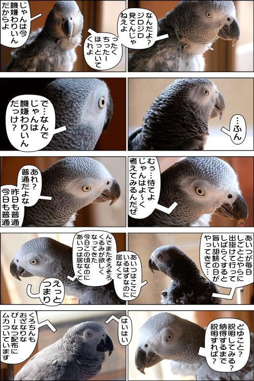 ノンフィクション劇場-No.86
