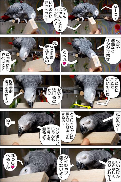 ノンフィクション劇場-No.88