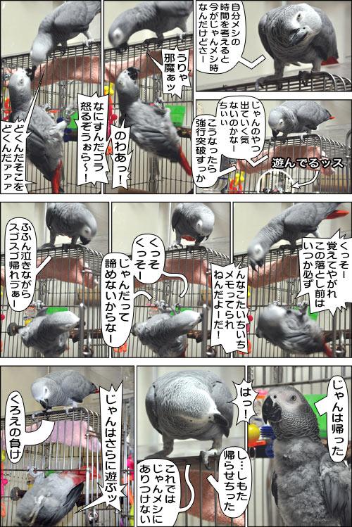 ノンフィクション劇場-No.90