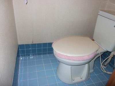 着工前トイレ2
