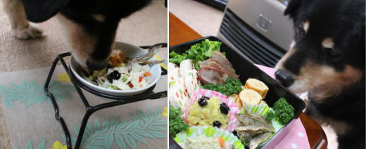 全部食べちゃうのね(*`艸´)ウシシシ