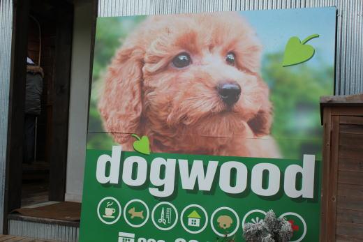 dogwoodさん