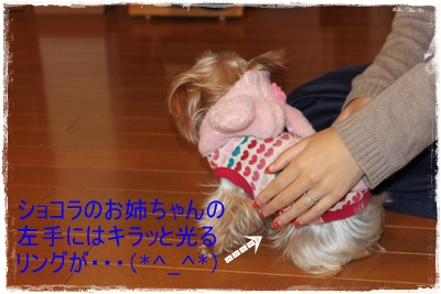 2011_1204_164701-IMG_4991.jpg