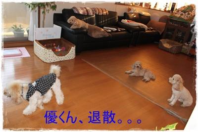 2011_1206_155712-IMG_5017.jpg