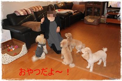 2011_1206_155819-IMG_5021.jpg