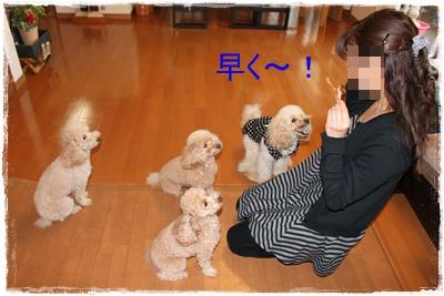 2011_1206_155838-IMG_5025.jpg