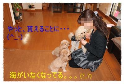 2011_1206_155852-IMG_5030.jpg
