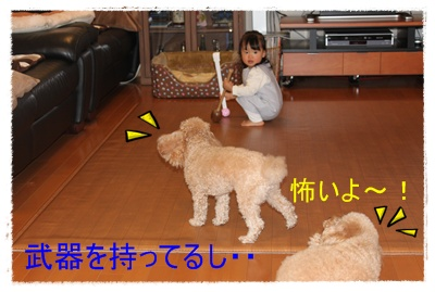 2011_1207_145746-IMG_5059.jpg