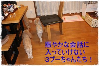 2011_1216_203734-IMG_5110.jpg