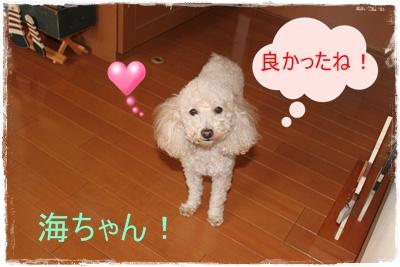 2012_0109_145219-IMG_5320.jpg