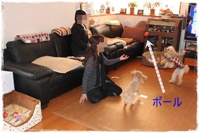 2012_0112_145537-IMG_5351.jpg