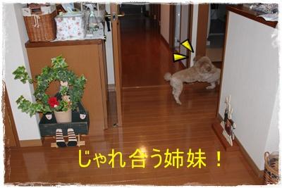 2012_0125_095348-IMG_5451.jpg