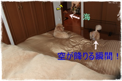 2012_0127_132220-IMG_5493.jpg