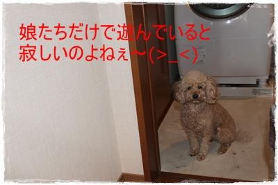 2012_0131_082039-IMG_5535.jpg