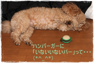 2012_0215_194429-IMG_5760.jpg