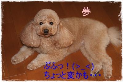 2012_0226_163558-IMG_5836.jpg