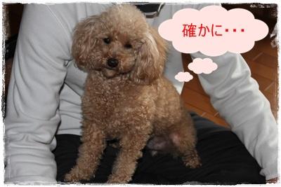 2012_0226_163610-IMG_5839.jpg